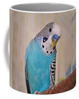 Blue Parakeet Coffee Mug