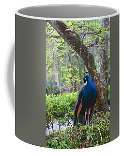 Blue Peacock  Coffee Mug