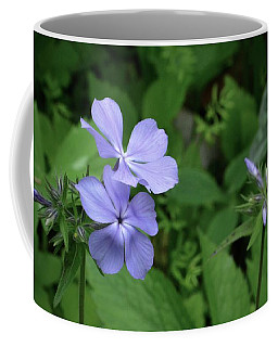 Blue Phlox Coffee Mug by Tim Good