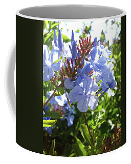 Coffee Mug featuring the photograph Blue Plumbago by Mary Ellen Frazee