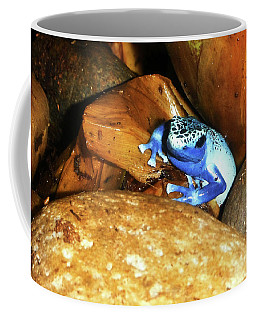 Coffee Mug featuring the photograph Blue Poison Dart Frog by Anthony Jones