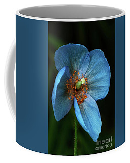 Blue Poppy Vertical Coffee Mug