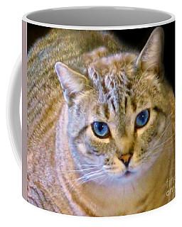 Strikingly Handsome Coffee Mug