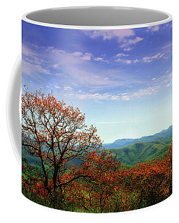 Coffee Mug featuring the photograph Blue Ridge Blessing by Jessica Brawley