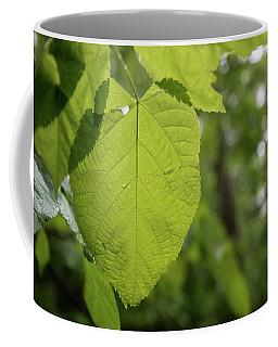 Blue Ridge Leaf Coffee Mug
