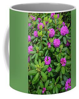 Blue Ridge Mountains Rhododendron Blooming Coffee Mug
