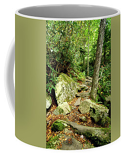 Coffee Mug featuring the photograph Blue Ridge Parkway Hiking Trail by Meta Gatschenberger