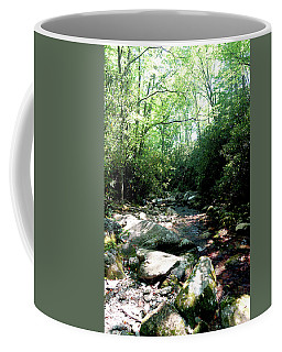 Coffee Mug featuring the photograph Blue Ridge Parkway Stream by Meta Gatschenberger