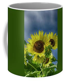 Blue Sky Day Coffee Mug