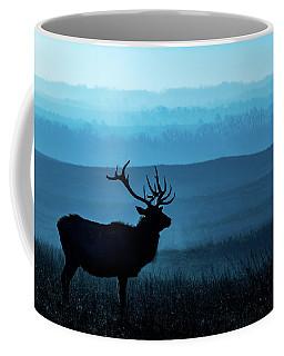 Coffee Mug featuring the photograph Blue Sunrise by Jay Stockhaus
