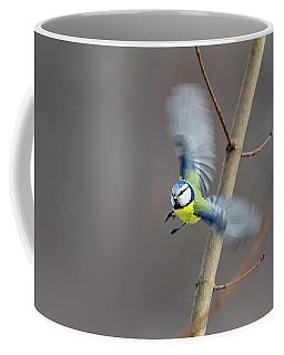 Blue Tit In Flight Coffee Mug