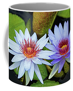 Coffee Mug featuring the photograph Blue Water Lilies by Judy Vincent