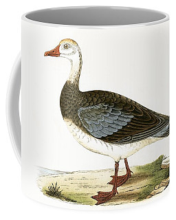 Blue Winged Goose Coffee Mug