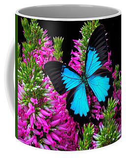 Blue Wings On Pink Flowers Coffee Mug