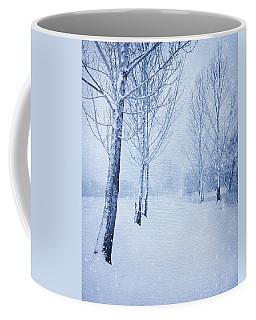 Blue Winter Path Coffee Mug by Theresa Tahara