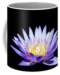 Coffee Mug featuring the photograph Blue Wonder by Judy Vincent
