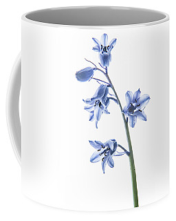 Bluebell Stem Coffee Mug