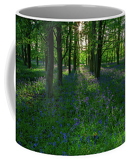 Bluebells In Oxey Woods Coffee Mug