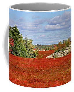 Coffee Mug featuring the photograph Blueberry Field by Debbie Stahre