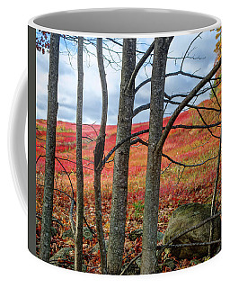 Blueberry Field Through The Wall - Cropped Coffee Mug