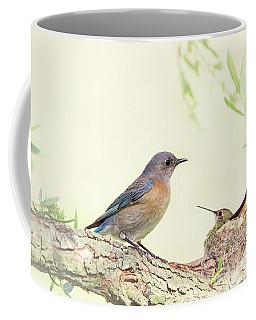 Bluebird And Baby Hummer Coffee Mug