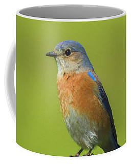 Bluebird Digital Art Coffee Mug