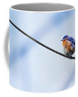 Coffee Mug featuring the photograph Bluebird Of Happiness by Linda Unger