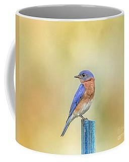 Coffee Mug featuring the photograph Bluebird On Blue Stick by Robert Frederick