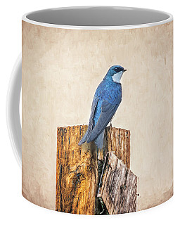 Coffee Mug featuring the photograph Bluebird Post by James BO Insogna