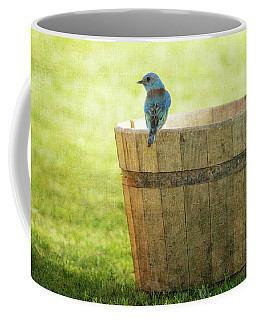 Bluebird Resting On Bucket, Textured Coffee Mug
