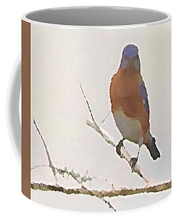 Bluebird Stare  Coffee Mug