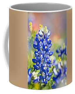 Bluebonnet 1 Coffee Mug