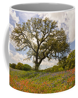 Bluebonnets Paintbrush And An Old Oak Tree - Texas Hill Country Coffee Mug