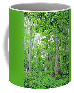 Blueboonet Swamp Baton Rouge La Coffee Mug