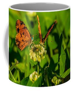 Bluehead Butterfly Coffee Mug