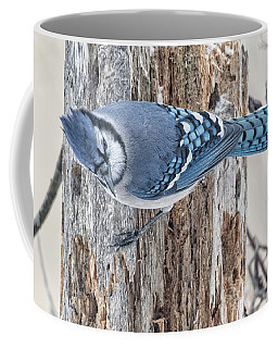 Bluejay #1 Coffee Mug