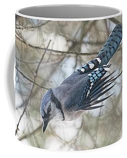 Bluejay #2 Coffee Mug
