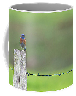 Blues  Coffee Mug