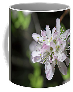 Blushing Azaleas Coffee Mug