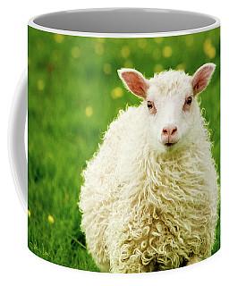 Coffee Mug featuring the photograph Bo Peep's Sheep by Joan Davis