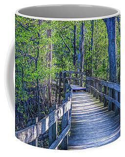 Boardwalk Going Into The Woods Coffee Mug