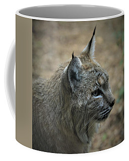 Bobcat In Profile Coffee Mug