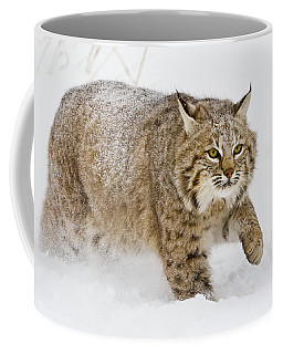 Bobcat In Snow Coffee Mug