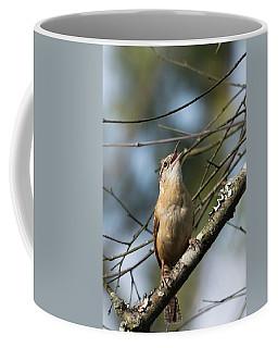 Bobolink Singing Coffee Mug