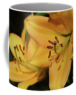 Coffee Mug featuring the photograph Bogo Lilies by Cindy Manero
