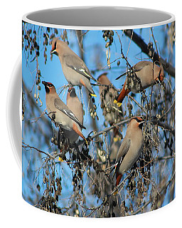 Bohemian Waxwings Coffee Mug by Kathy Bassett