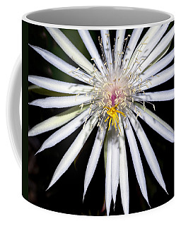 Bold Cactus Flower Coffee Mug