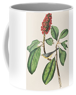 Bonaparte's Flycatcher Coffee Mug