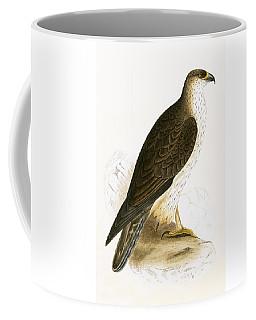 Bonelli's Eagle Coffee Mug