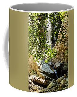 Bonita Falls Through Leaves Coffee Mug